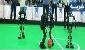 تیم رباتیک «باسط پژوه» قهرمان بخش سایز بزرگ ربوکاپ 2016 آلمان