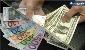 16 ارز بانکی گران شد