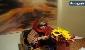 ایران درودی در بیمارستان/نقاش 80 ساله سلامت است