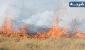 آتشسوزی طاقبستان مهار شد/ آثار باستانی آسیب ندید