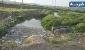 هشدار محیط زیست از آبیاری مزارع جنوب تهران با فاضلاب