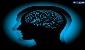 با افزایش سن مغز شلتر میشود
