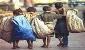 """درمان """"ایدز"""" در کودکان کار به کجا رسید؟"""